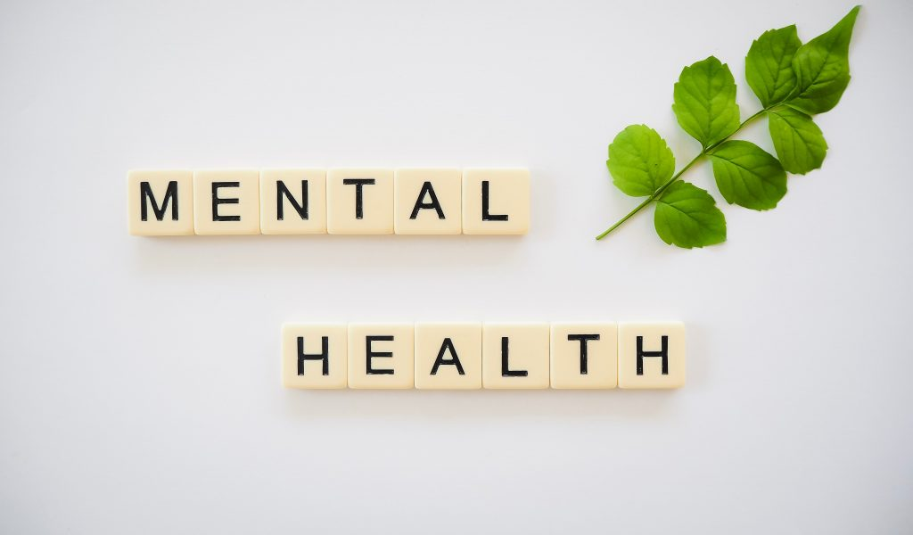 """""""mental health"""" spelled out in block letters next to a green stem with leaves"""