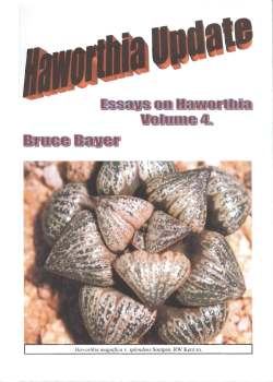 Haworthia Updates vol. 4