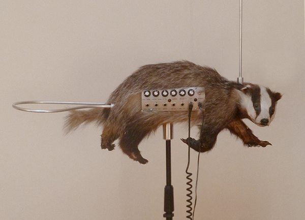 The badgermin. Follow the link for video of it in action.