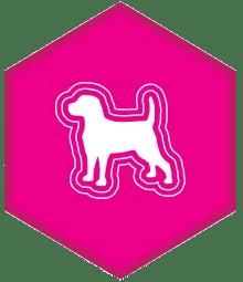 eukanuba grow dog food