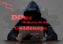 GoldenEye – Layer 7 DoS Test Tool