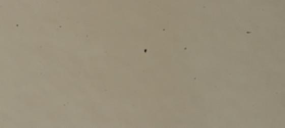 Image dust 20150110 3