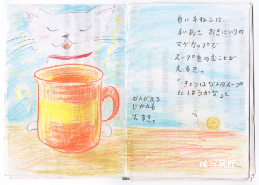 family picture book | 白い子ねこ1