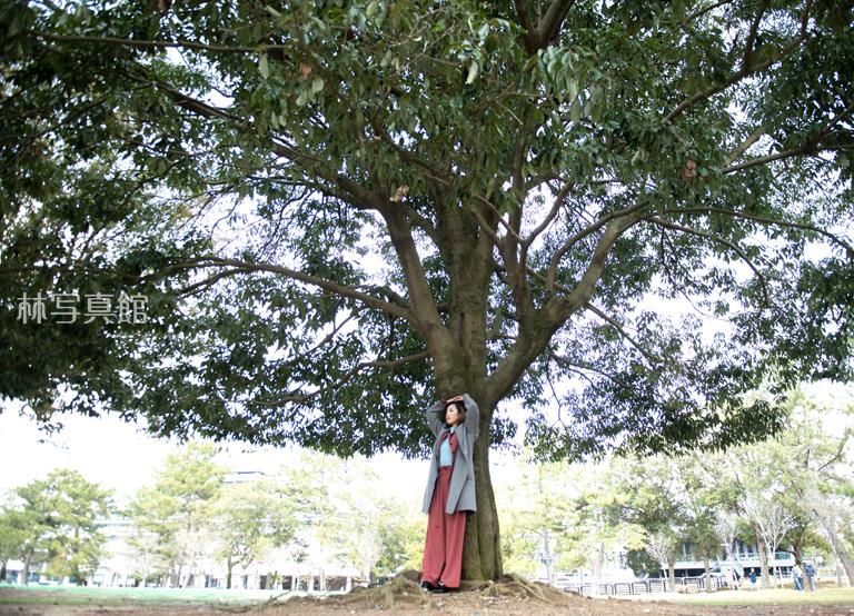 女性ポートレイト | 樹木