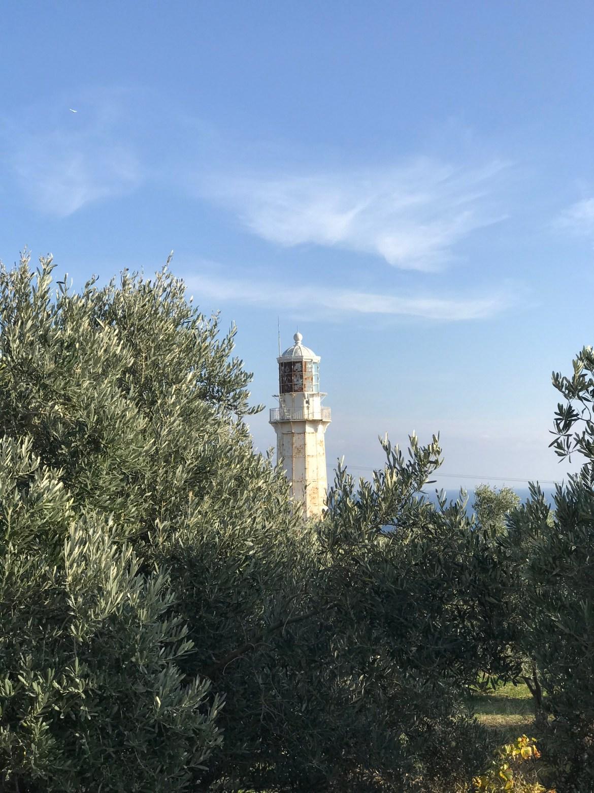 Höşköy Deniz Feneri ve Zeytinlik