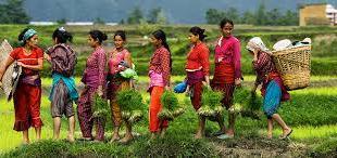 Marrakech accueille une première mondiale : Femmes et Agriculture en Afrique