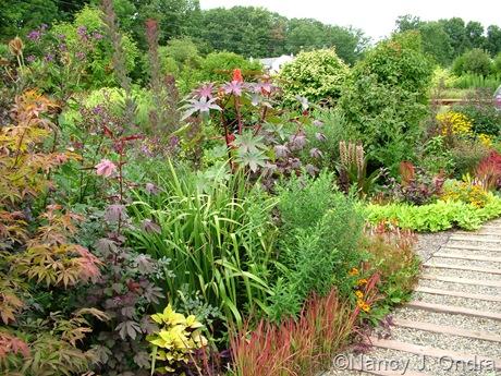 Front garden at Hayefield Aug 14 10