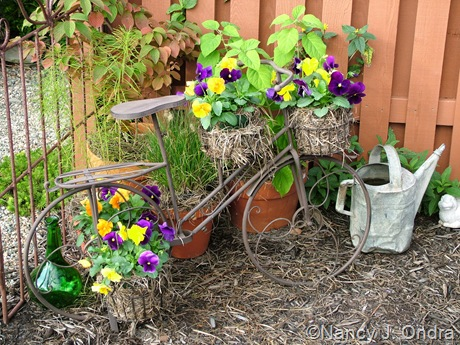 Pansy planters Sept 14 10