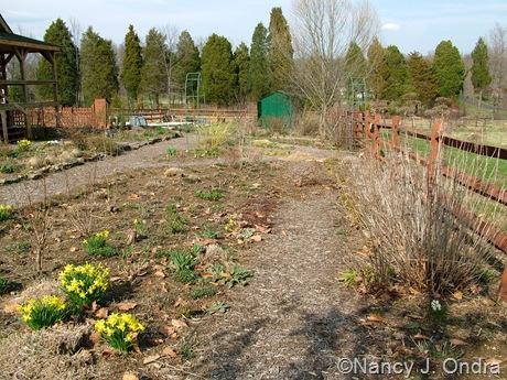 Side garden mid-April 2011