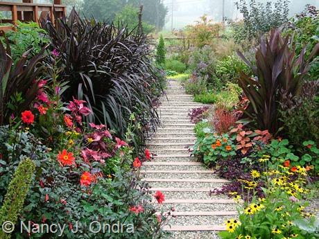 Front garden at Hayefield 2011