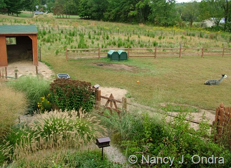 Courtyard, pasture, and meadow at Hayefield October 2005
