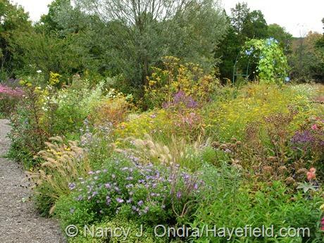Side Garden at Hayefield (September 2010)