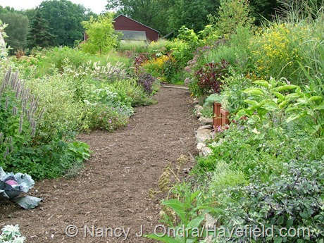 The Side Garden at Hayefield (August 2006)