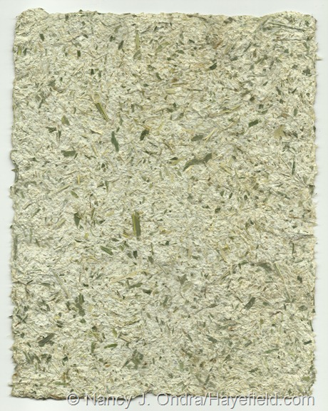 Paper pulp blended with corn foliage