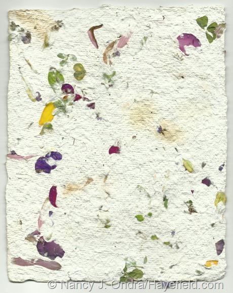 Petal Paper