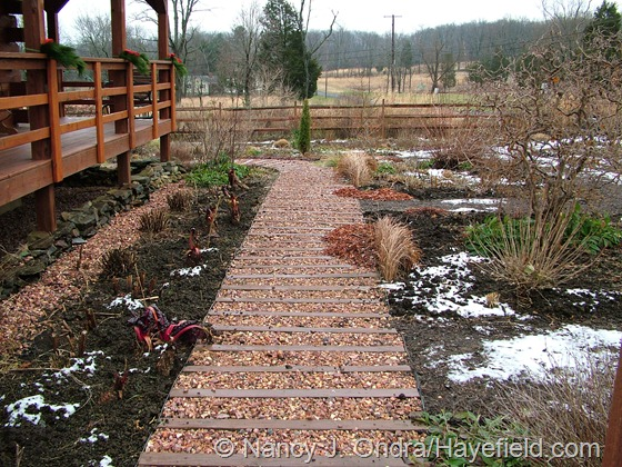 The front path at Hayefield late December 2012