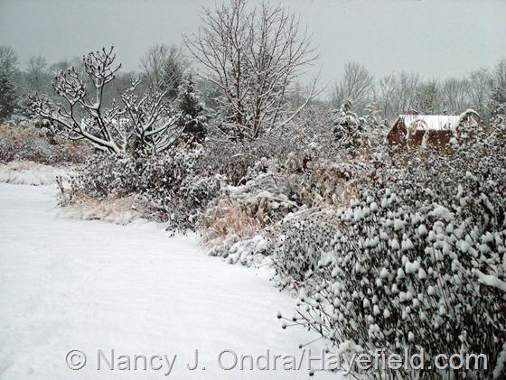 The TDF Border: December 10, 2013 at Hayefield.com