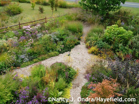 Diagonal Path at Hayefield.com