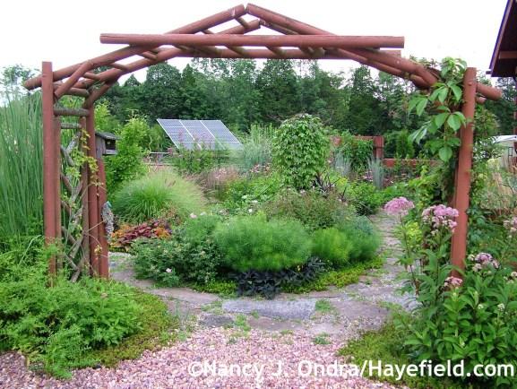 Courtyard arbor at Hayefield.com