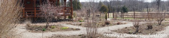 Front Garden at Hayefield - April 13, 2015