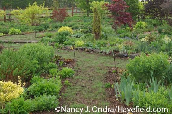 Grass Paths in Progress at Hayefield.com
