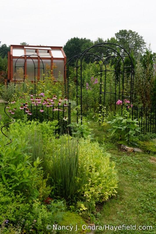The Happy Garden at Hayefield - August 2017 [Nancy J. Ondra/Hayefield.com]