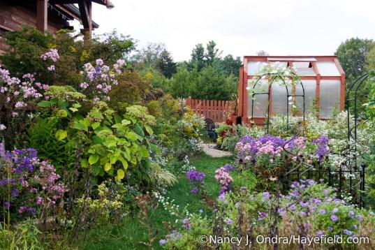 The Back Garden at Hayefield [Nancy J. Ondra/Hayefield.com]