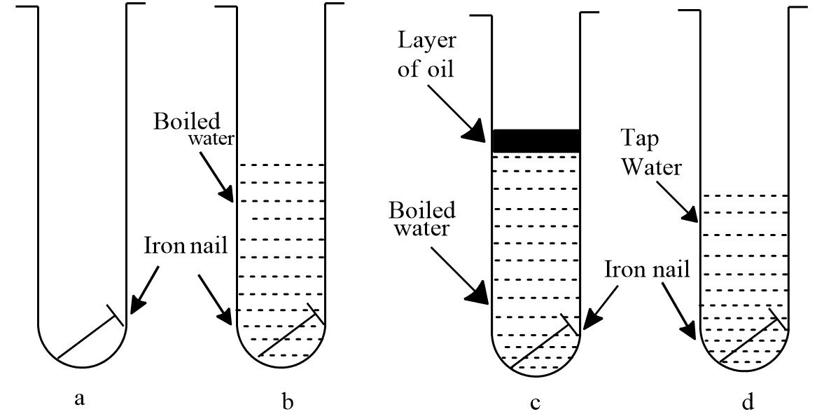 Write Equation For Anode Reaction During Rusting Of Iron