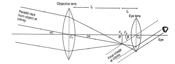 Draw a ray diagram showing the formation of image toppr.com