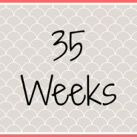 Twin Pregnancy Diary - 35 Weeks