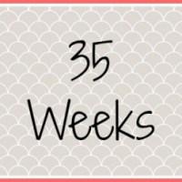 Twin Pregnancy Diary - 35 Weeks