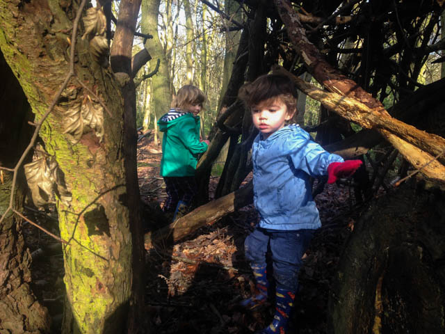 Eastham Woods (6 of 14)