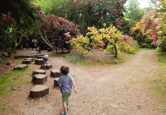 Tatton Gardens (12 of 23)