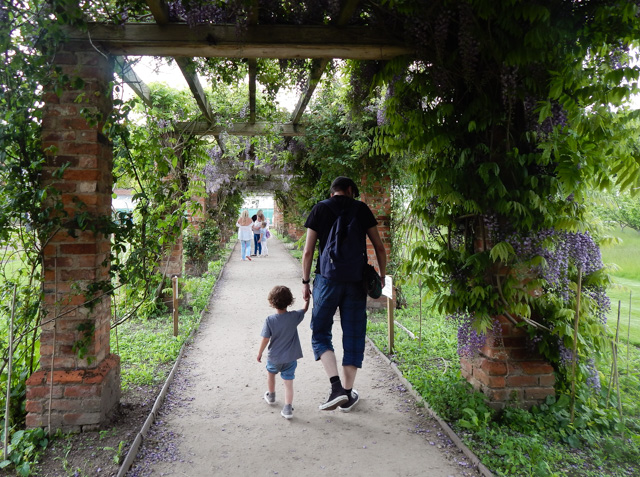Tatton Gardens (20 of 23)