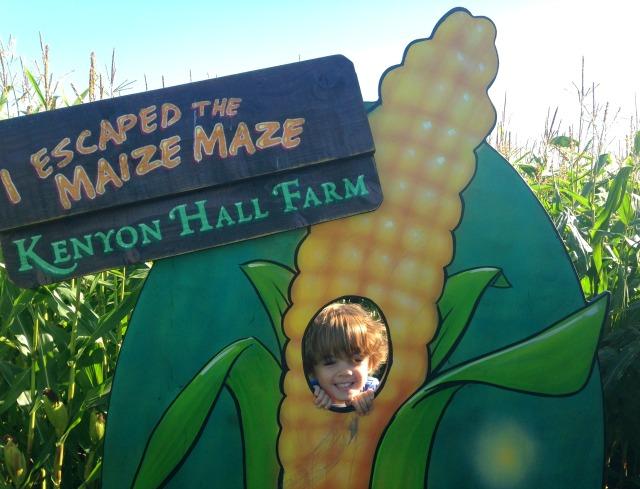 maize-maze-7