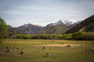 Crown Range Road by Hayley Roberts Photography