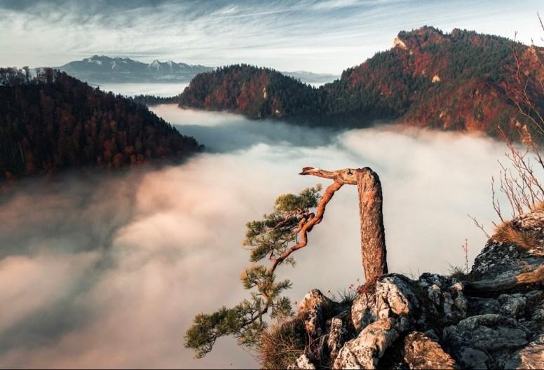A Dunajec felett ködtenger úszik