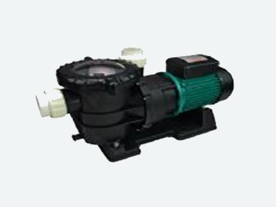 Swimming Pool Pumps and Motors: