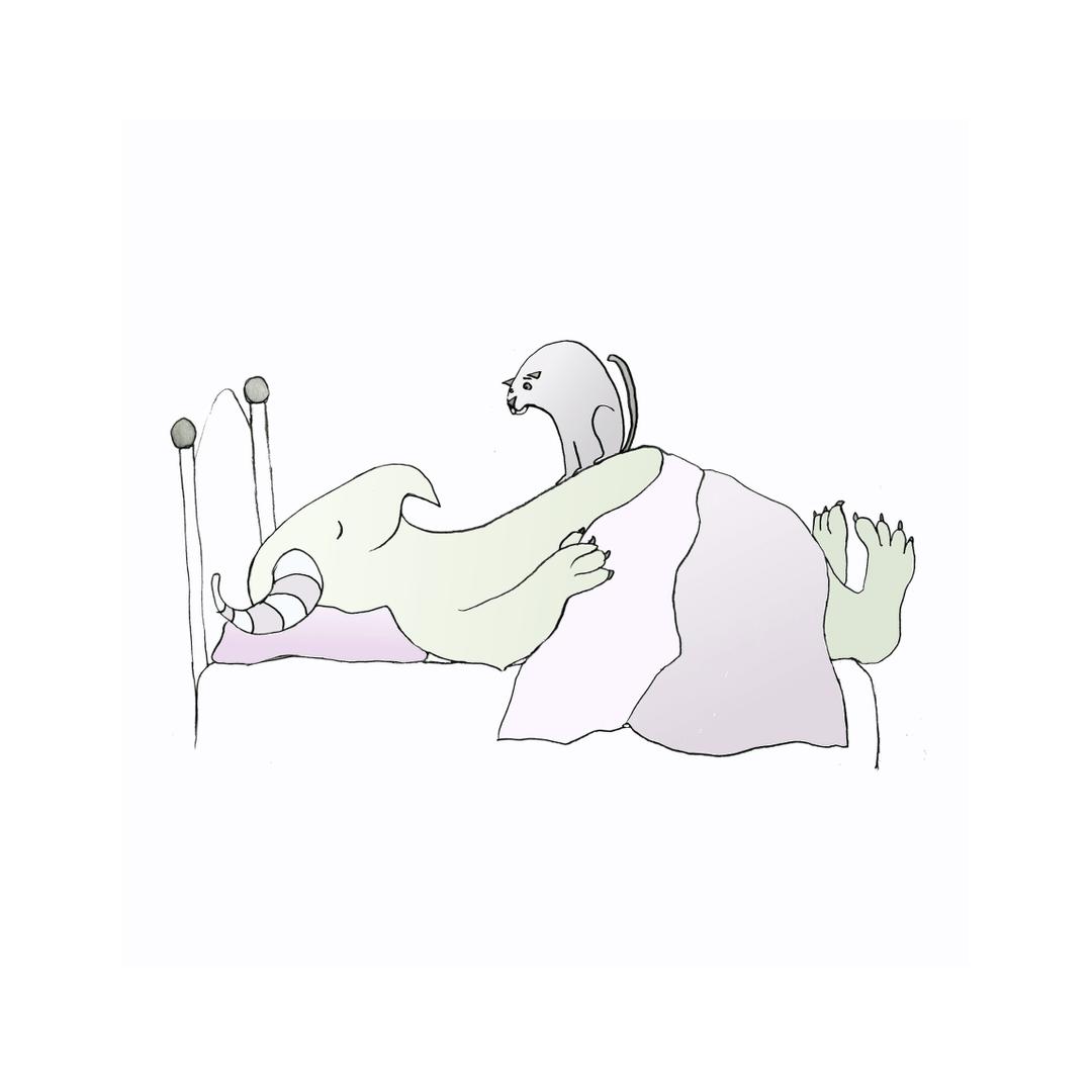 sleeppalsflat