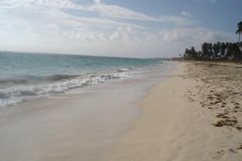 Punta Cana 2011 440
