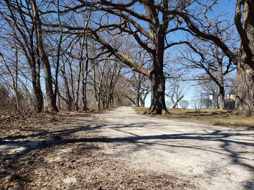 Take a walk in the park day – March 30th