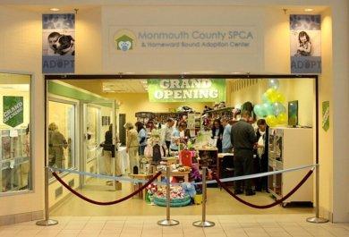 freehold adoption center