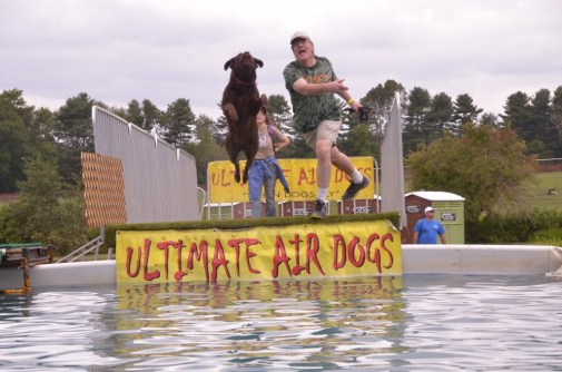 Ultimate Air Dogs In Action