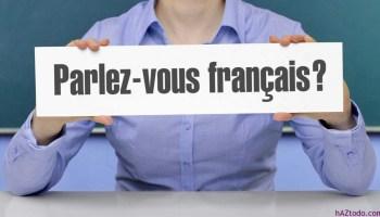 Francés Para Viajeros Clase 1