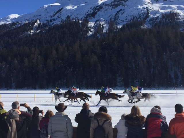 White Turf St Moritz 2017