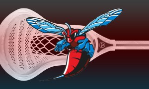 Delaware State lacrosse