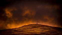 Hill on fire - Bruce Coombe