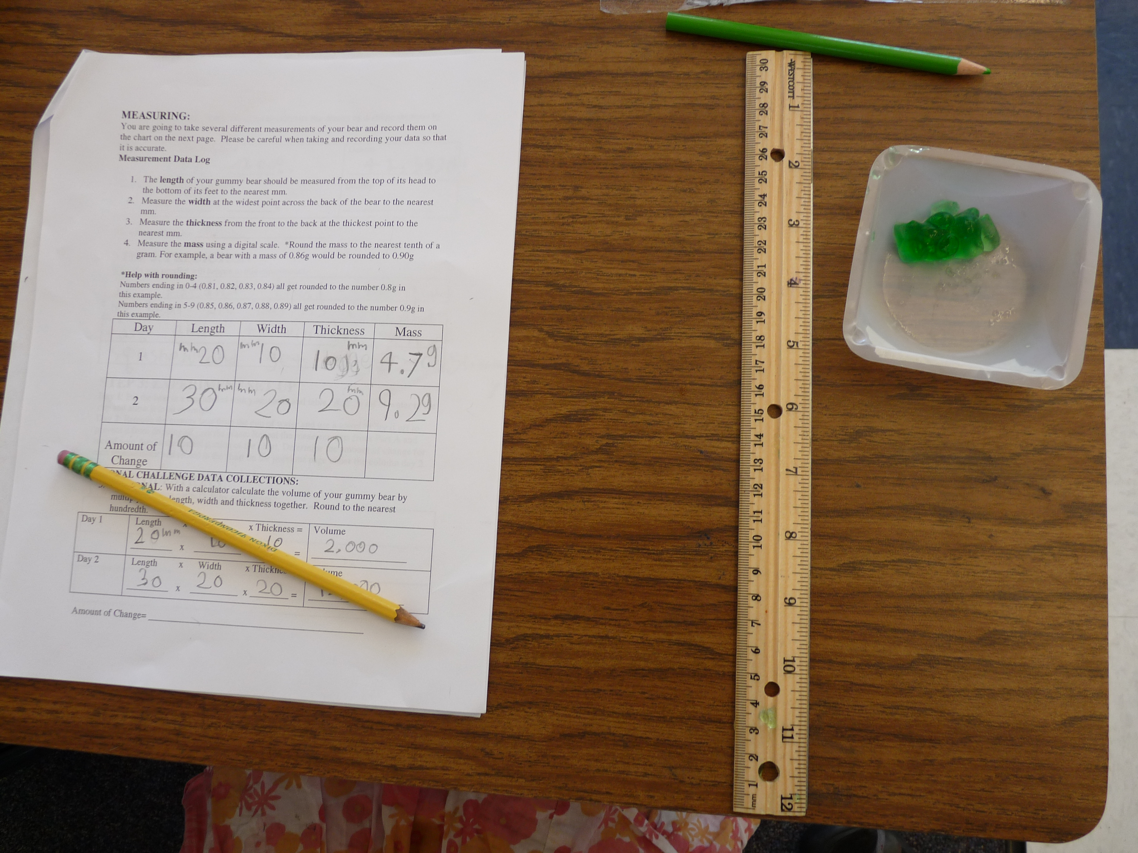 The Gummy Bear Lab Putting The Scientific Method Into