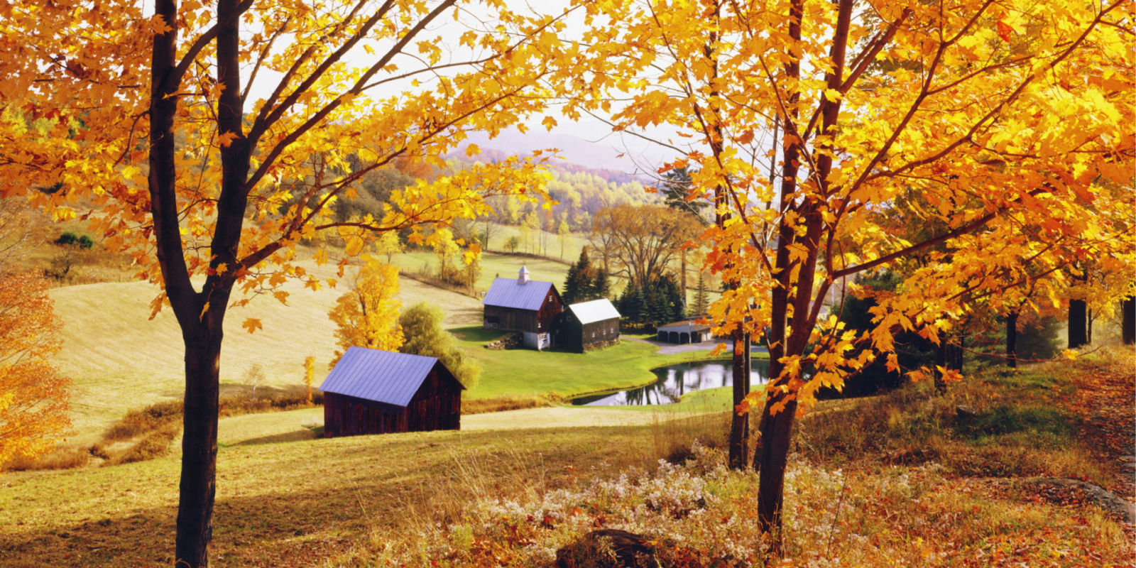 Fall Leaves Wallpaper For Desktop Fall In The Country Why Fall Is The Best Season
