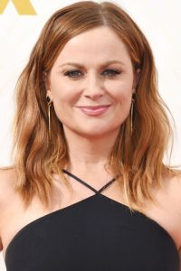 Cool Hair Colors Amy Poehler Natural Hair Color Amy ...